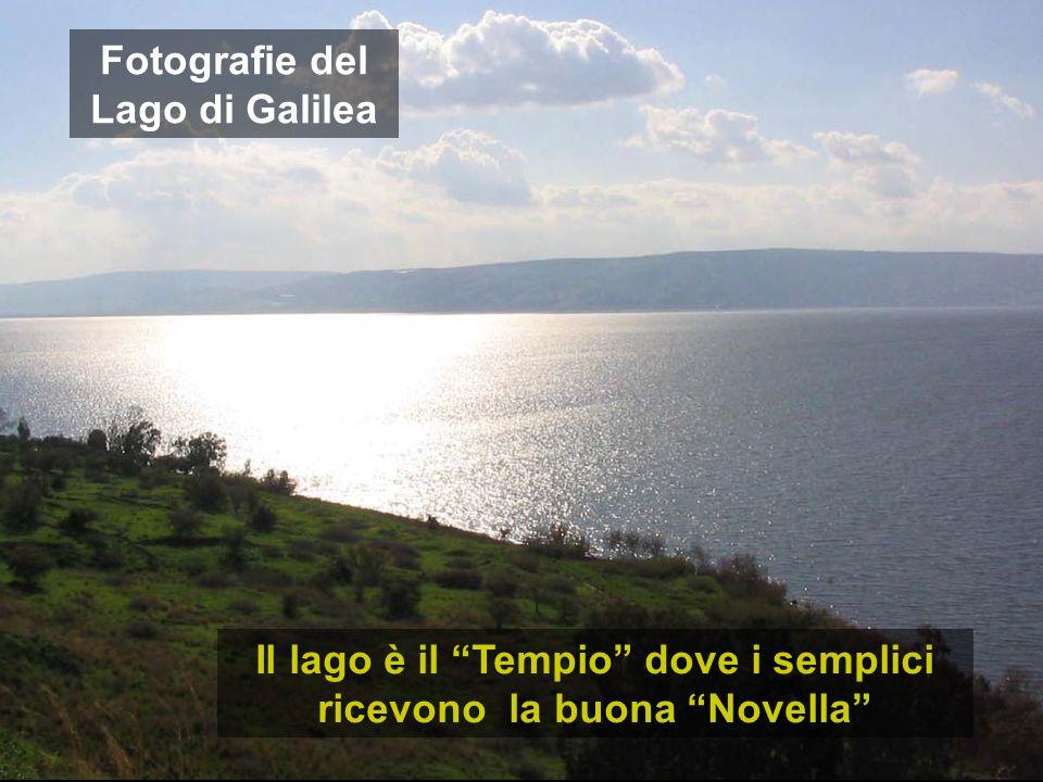 Fotografie del Lago di Galilea Il lago è il Tempio dove i semplici ricevono la buona Novella