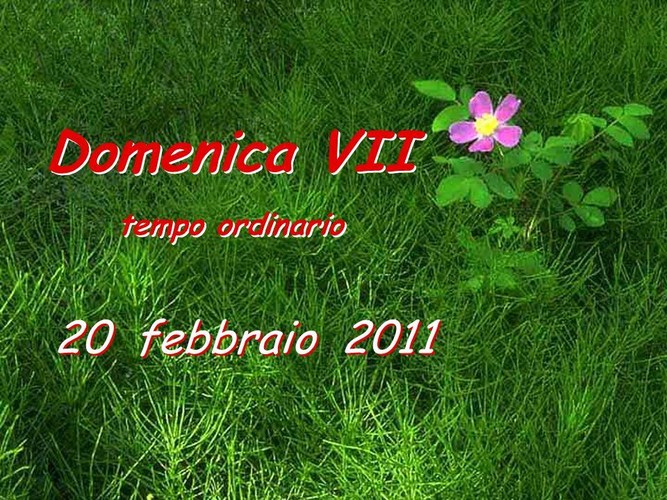 20 febbraio 2011 Domenica VII tempo ordinario Domenica VII tempo ordinario