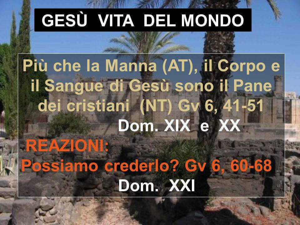 GESÙ VITA DEL MONDO Più che la Manna (AT), il Corpo e il Sangue di Gesù sono il Pane dei cristiani (NT) Gv 6, 41-51 Dom.