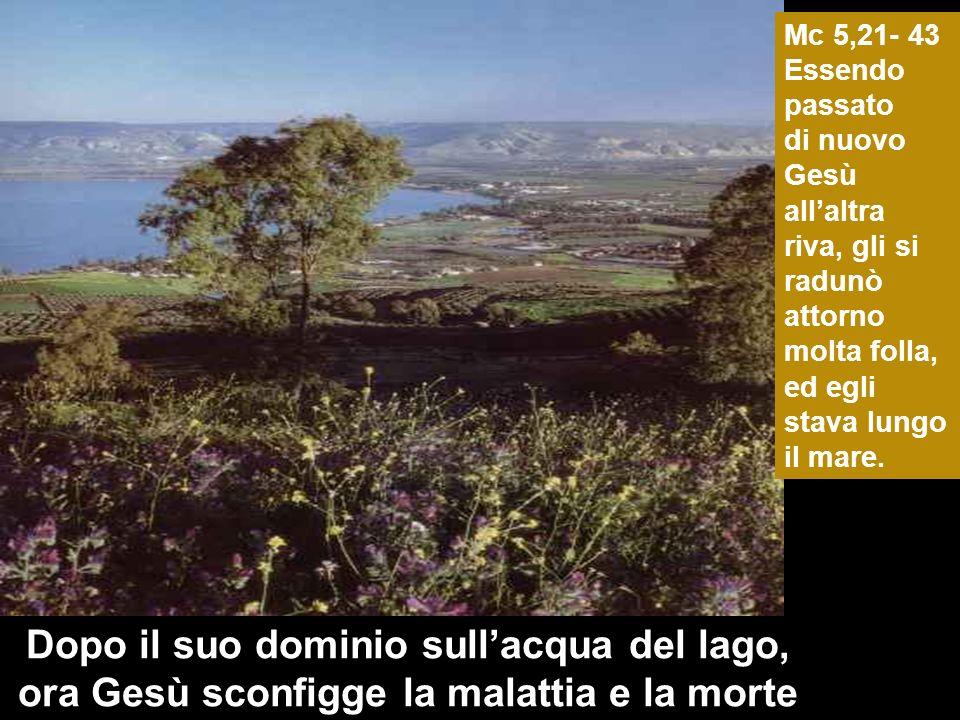 Dopo il suo dominio sullacqua del lago, ora Gesù sconfigge la malattia e la morte Mc 5,21- 43 Essendo passato di nuovo Gesù allaltra riva, gli si radunò attorno molta folla, ed egli stava lungo il mare.