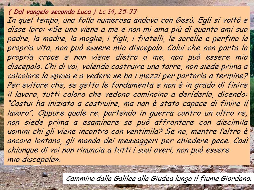 ALLELUIA Salmo 118, 135 Fa risplendere il tuo volto sul tuo servo e insegnami i tuoi decreti.
