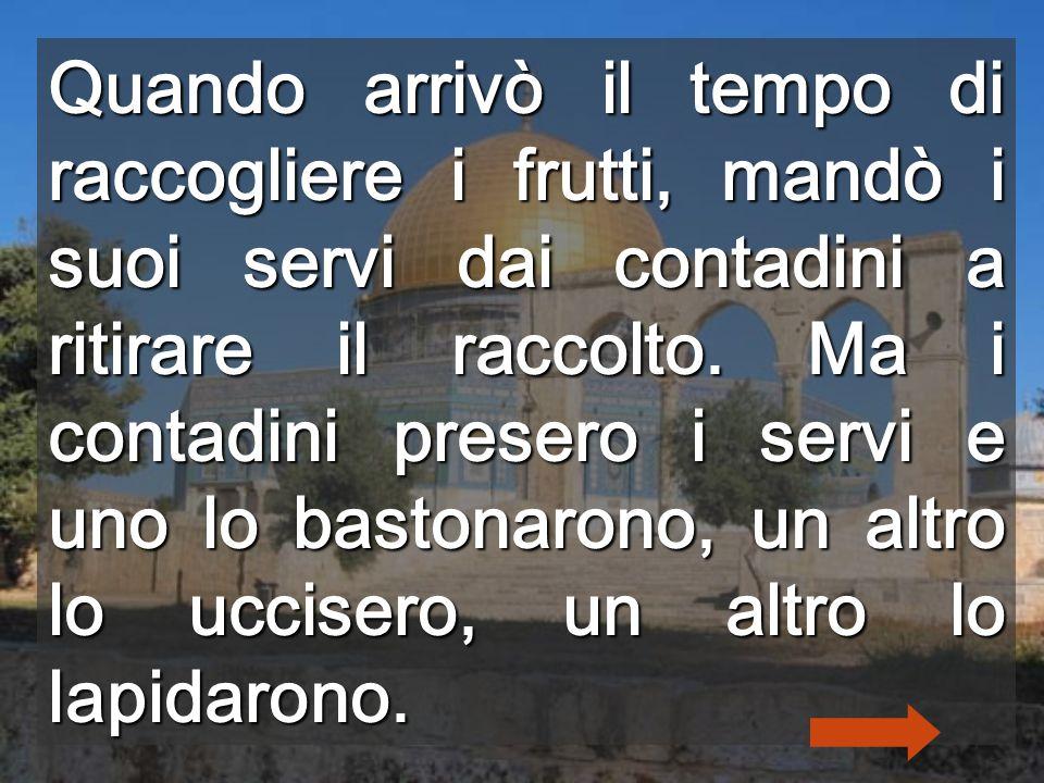 Dio vi da la Vigna per coltivarla Anche tu sei Vigna... Mosaici della Creazione (Venezia)
