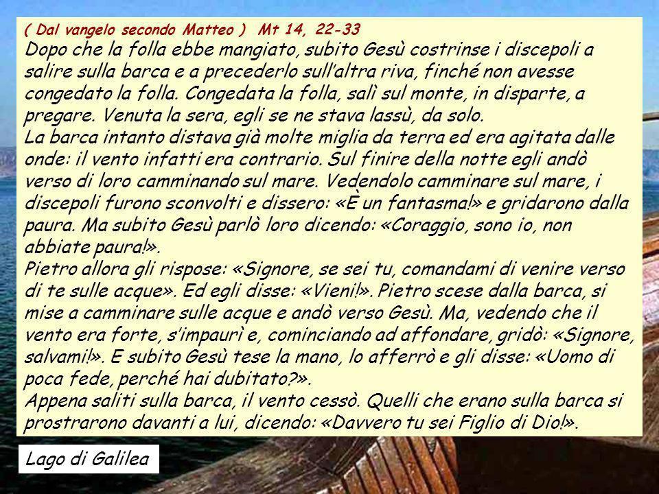 ALLELUIA Salmo 129:,5 ALLELUIA Salmo 129:,5 Io spero, Signore. Spera lanima mia, attendo la sua parola. Colosseo - Roma