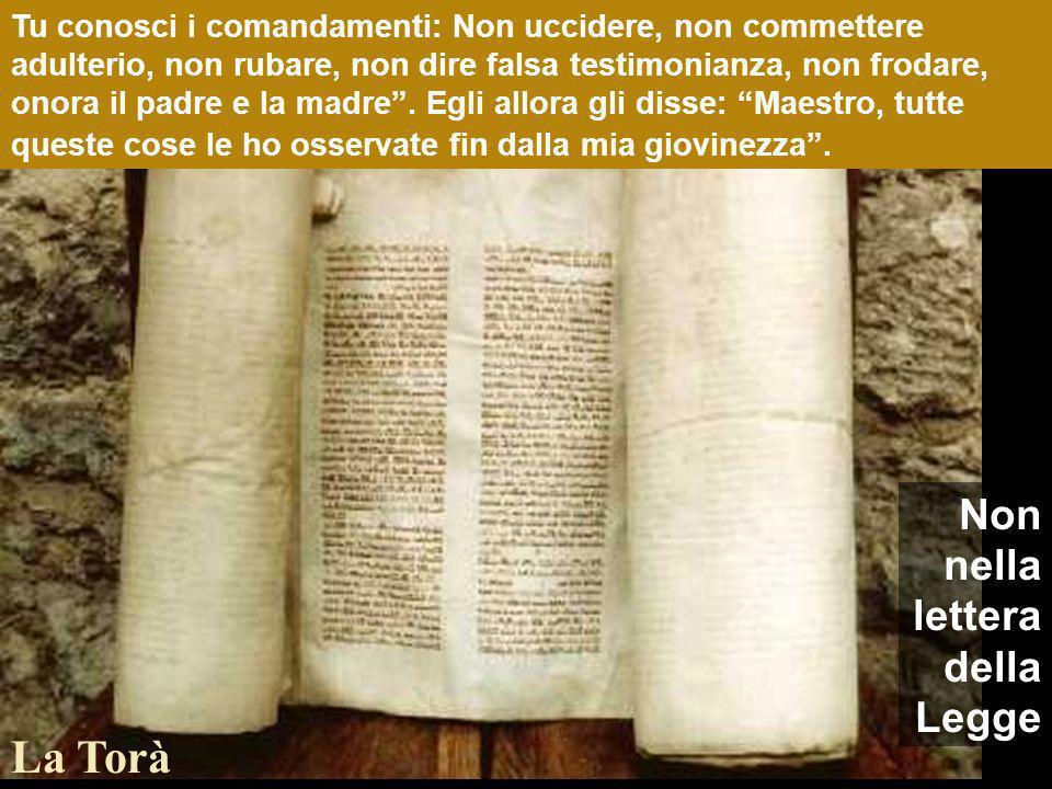 Tu conosci i comandamenti: Non uccidere, non commettere adulterio, non rubare, non dire falsa testimonianza, non frodare, onora il padre e la madre.