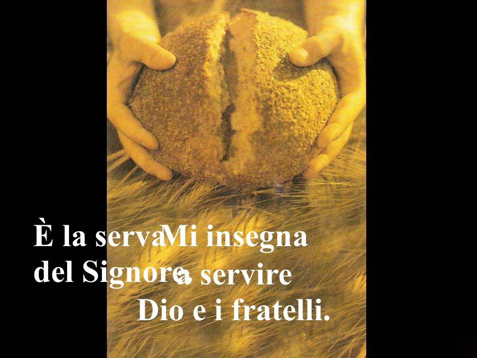 È la serva del Signore. Mi insegna a servire Dio e i fratelli.