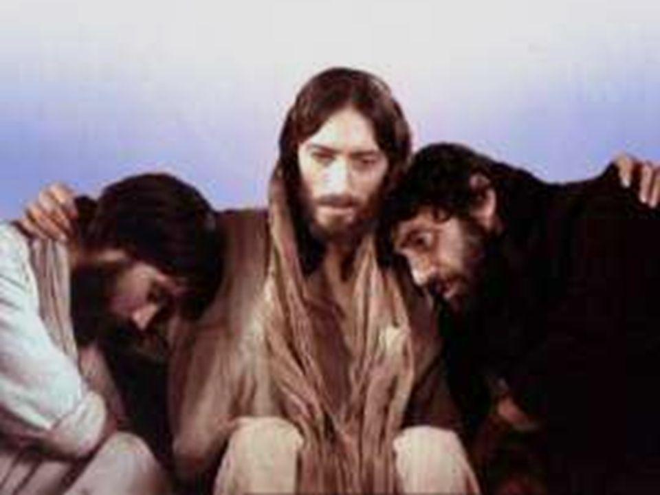 Gesù oggi fa memoria come la vita passa attraverso la potatura della Pasqua, sulla scia del suo cammino, per dare «più frutto».