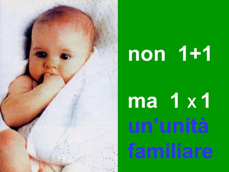 non 1+1 ma 1 X 1 ununità familiare