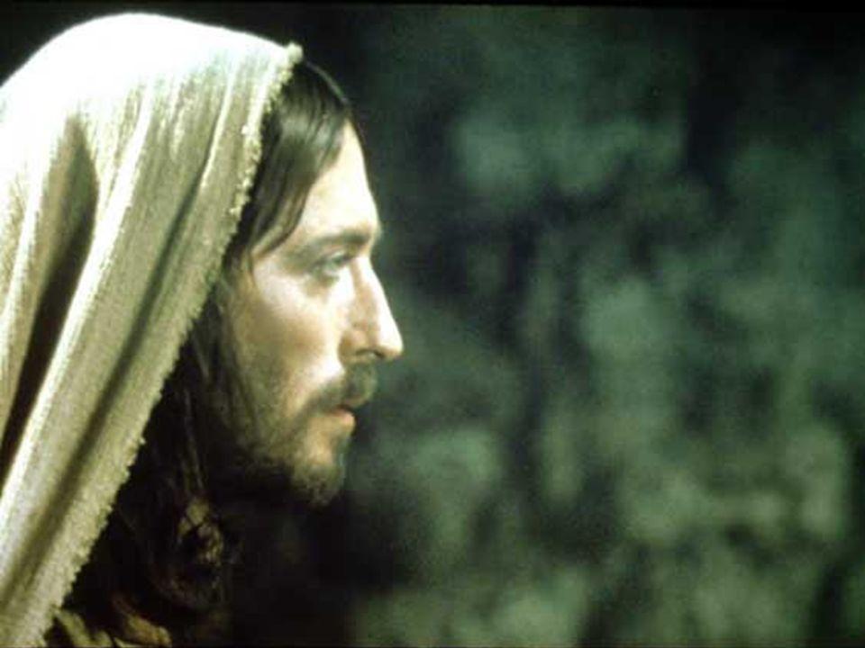 Grandi cose ha fatto il Signore per noi ha fatto germogliare i fiori fra le rocce. Grandi cose ha fatto il Signore per noi ci ha riportati liberi alla