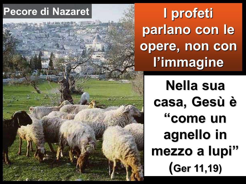Nella sua casa, Gesù è come un agnello in mezzo a lupi (Ger 11,19) I profeti parlano con le opere, non con limmagine Pecore di Nazaret
