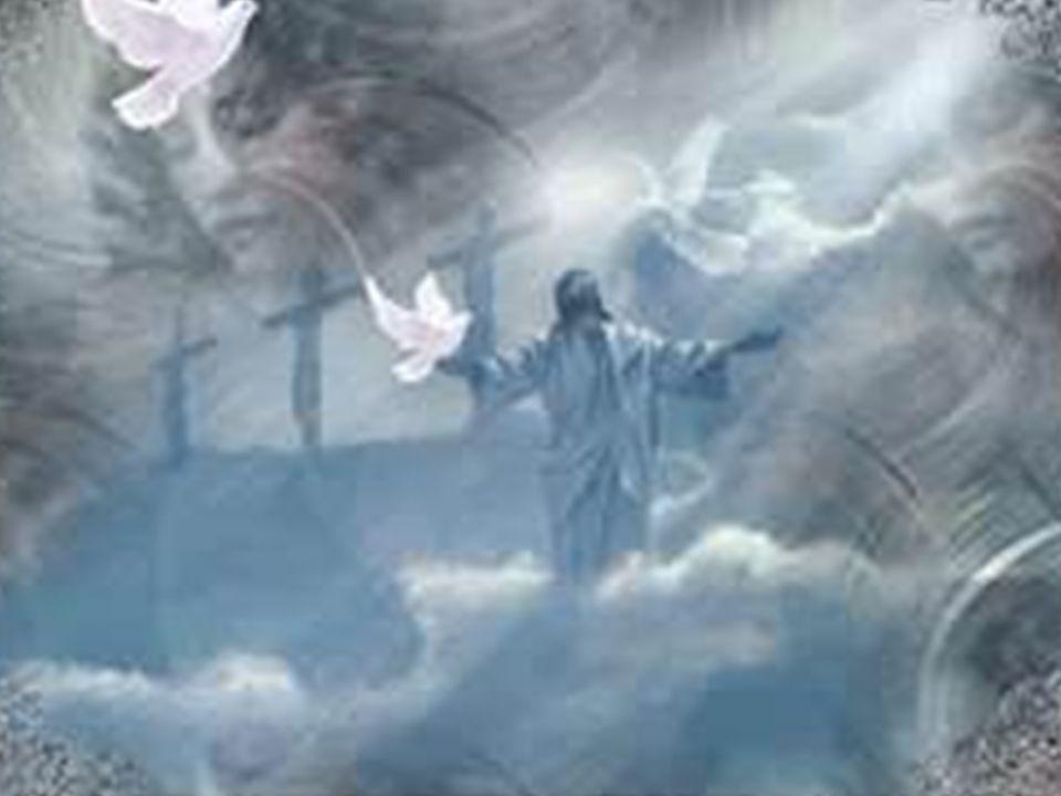 Fare clic per modificare lo stile del sottotitolo dello schema 23/11/12 Dn 7, 13-14 1 Guardando nelle visioni notturne 2 ecco venire con le nubi del cielo uno simile a un figlio d uomo; 3 giunse fino al vegliardo e fu presentato a lui.