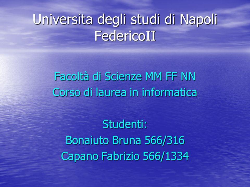Universita degli studi di Napoli FedericoII Facoltà di Scienze MM FF NN Corso di laurea in informatica Studenti: Bonaiuto Bruna 566/316 Capano Fabrizio 566/1334