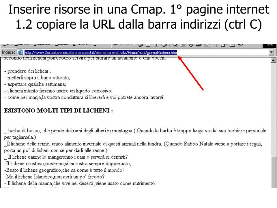 Inserire risorse in una Cmap. 1° pagine internet 1.2 copiare la URL dalla barra indirizzi (ctrl C)