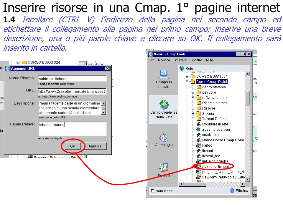 Inserire risorse in una Cmap. 1° pagine internet 1.4 Incollare (CTRL V) lindirizzo della pagina nel secondo campo ed etichettare il collegamento alla