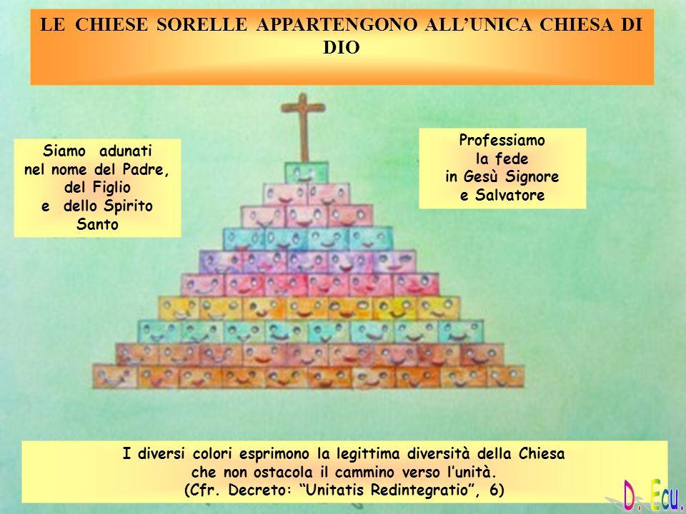LE CHIESE SORELLE APPARTENGONO ALLUNICA CHIESA DI DIO Siamo adunati nel nome del Padre, del Figlio e dello Spirito Santo Professiamo la fede in Gesù S