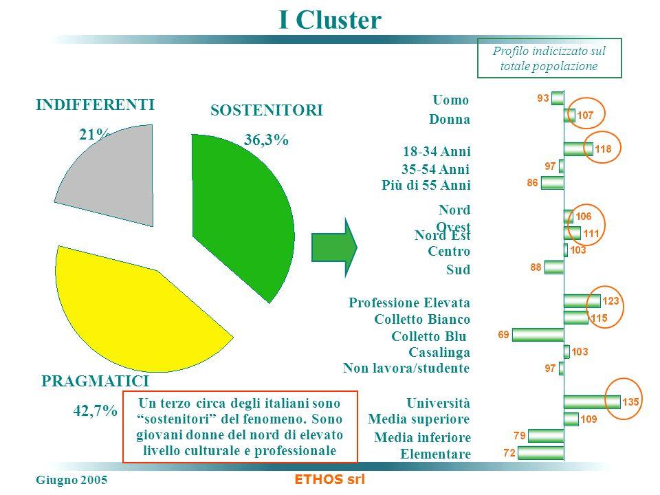 Giugno 2005 ETHOS srl I Cluster SOSTENITORI 36,3% PRAGMATICI 42,7% INDIFFERENTI 21% Un terzo circa degli italiani sono sostenitori del fenomeno.