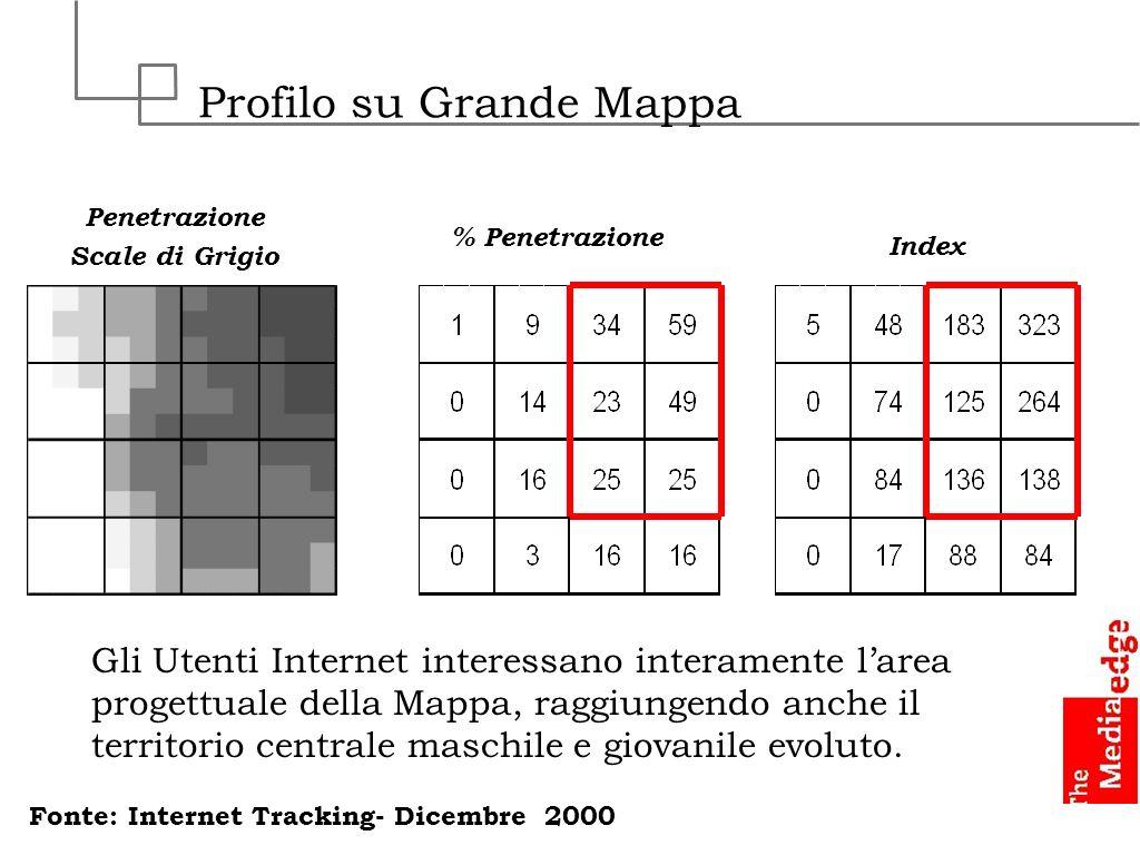 Profilo su Grande Mappa Penetrazione Scale di Grigio Index % Penetrazione Gli Utenti Internet interessano interamente larea progettuale della Mappa, r