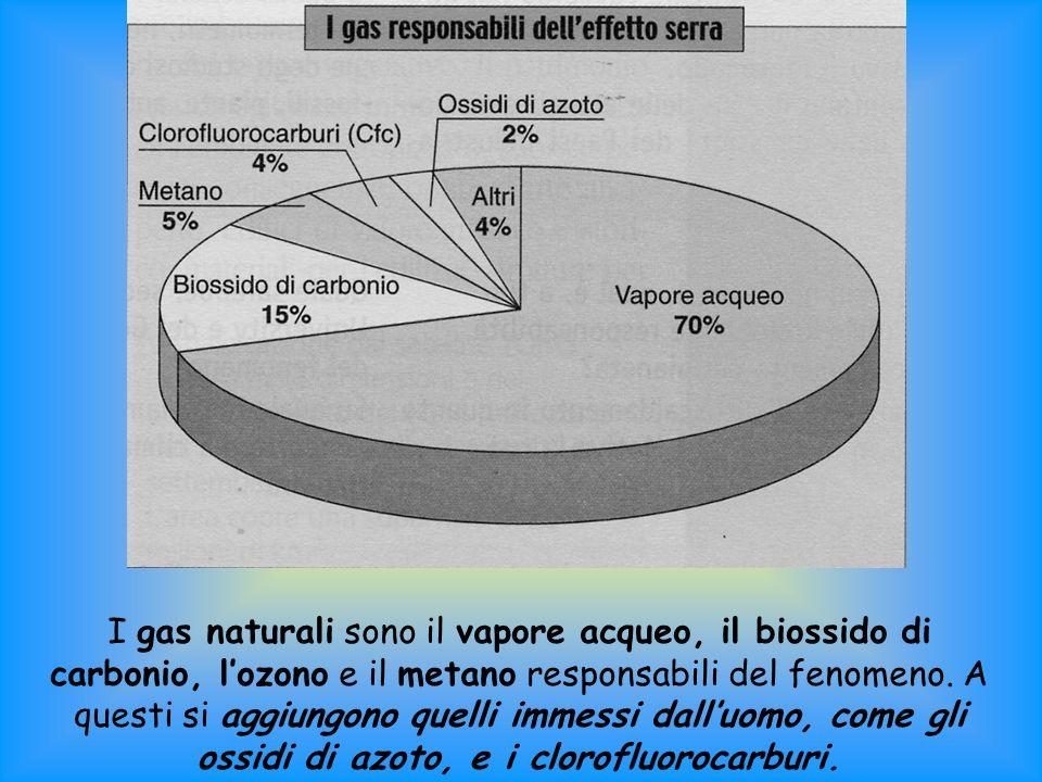 I gas naturali sono il vapore acqueo, il biossido di carbonio, lozono e il metano responsabili del fenomeno.