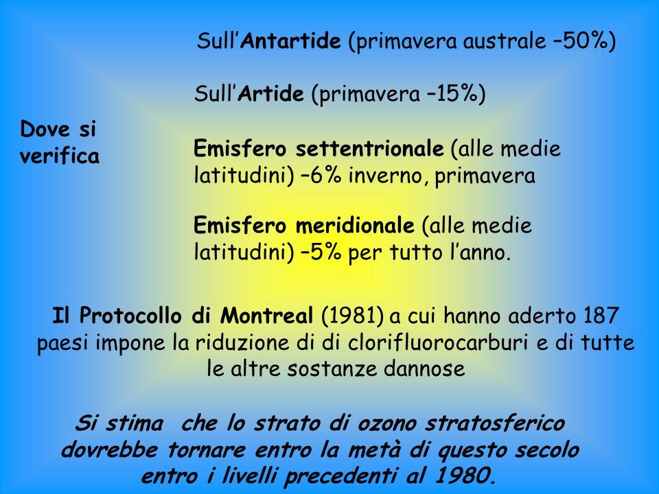 Dove si verifica SullAntartide (primavera australe –50%) SullArtide (primavera –15%) Emisfero settentrionale (alle medie latitudini) –6% inverno, primavera Emisfero meridionale (alle medie latitudini) –5% per tutto lanno.