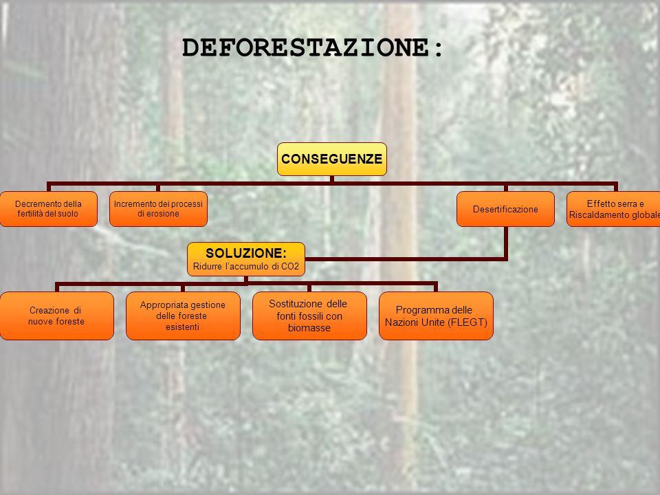 CONSEGUENZE Decremento della fertilità del suolo Incremento dei processi di erosione Desertificazione SOLUZIONE: Ridurre laccumulo di CO2 Creazione di