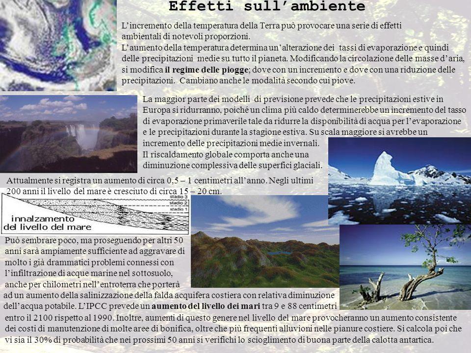 Effetti sullambiente Lincremento della temperatura della Terra può provocare una serie di effetti ambientali di notevoli proporzioni. Laumento della t