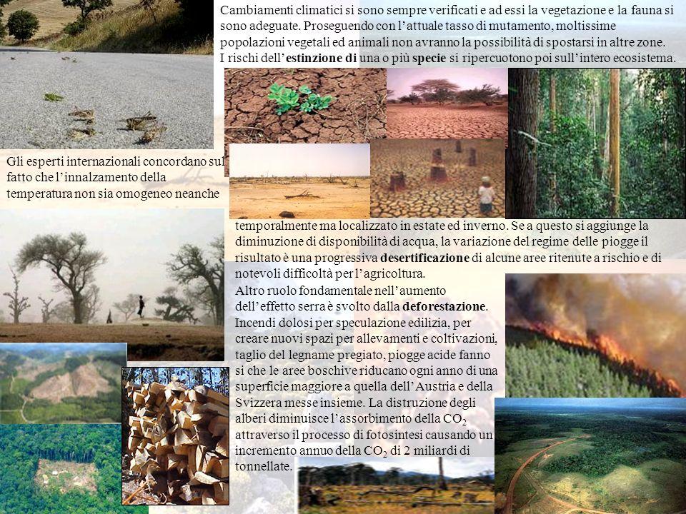 Cambiamenti climatici si sono sempre verificati e ad essi la vegetazione e la fauna si sono adeguate. Proseguendo con lattuale tasso di mutamento, mol