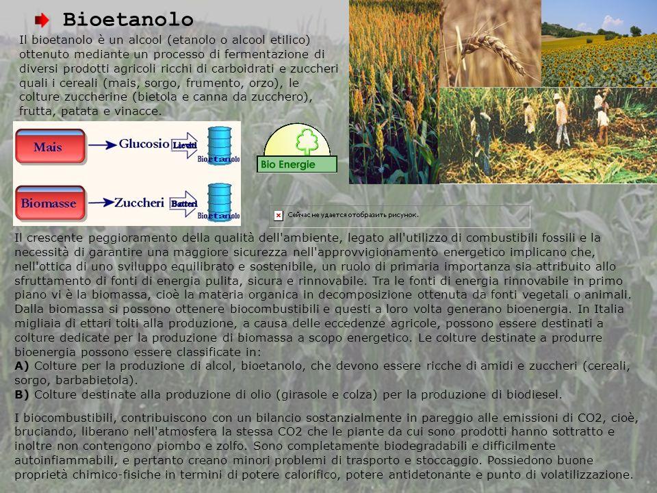 Bioetanolo Il bioetanolo è un alcool (etanolo o alcool etilico) ottenuto mediante un processo di fermentazione di diversi prodotti agricoli ricchi di carboidrati e zuccheri quali i cereali (mais, sorgo, frumento, orzo), le colture zuccherine (bietola e canna da zucchero), frutta, patata e vinacce.