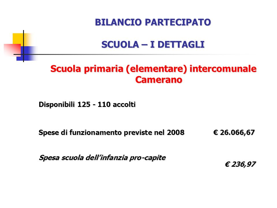 BILANCIO PARTECIPATO SCUOLA – I DETTAGLI Scuola primaria (elementare) intercomunale Camerano Disponibili 125 - 110 accolti Spese di funzionamento previste nel 2008 26.066,67 Spesa scuola dellinfanzia pro-capite 236,97