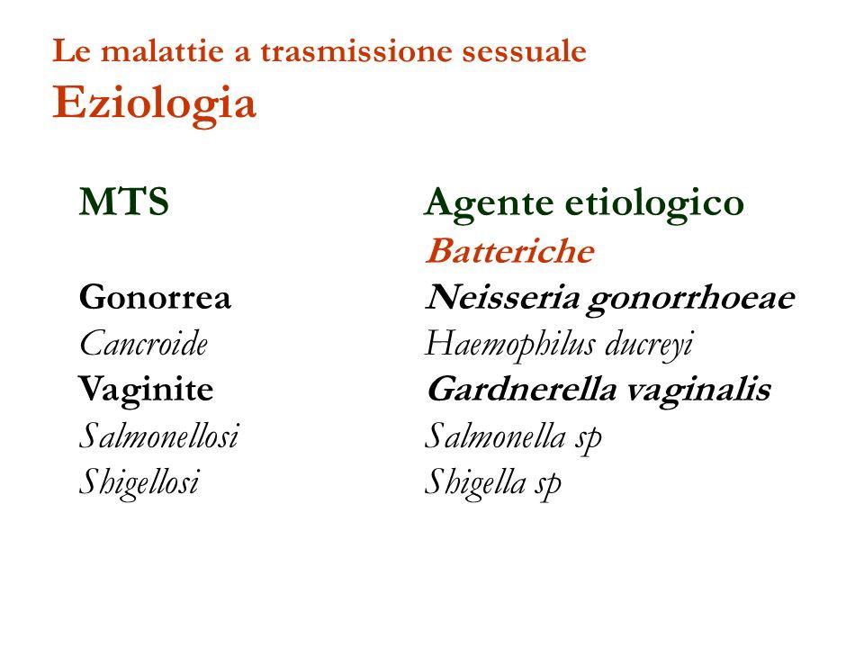 MTS Agente etiologico Batteriche Gonorrea Neisseria gonorrhoeae Cancroide Haemophilus ducreyi Vaginite Gardnerella vaginalis Salmonellosi Salmonella s