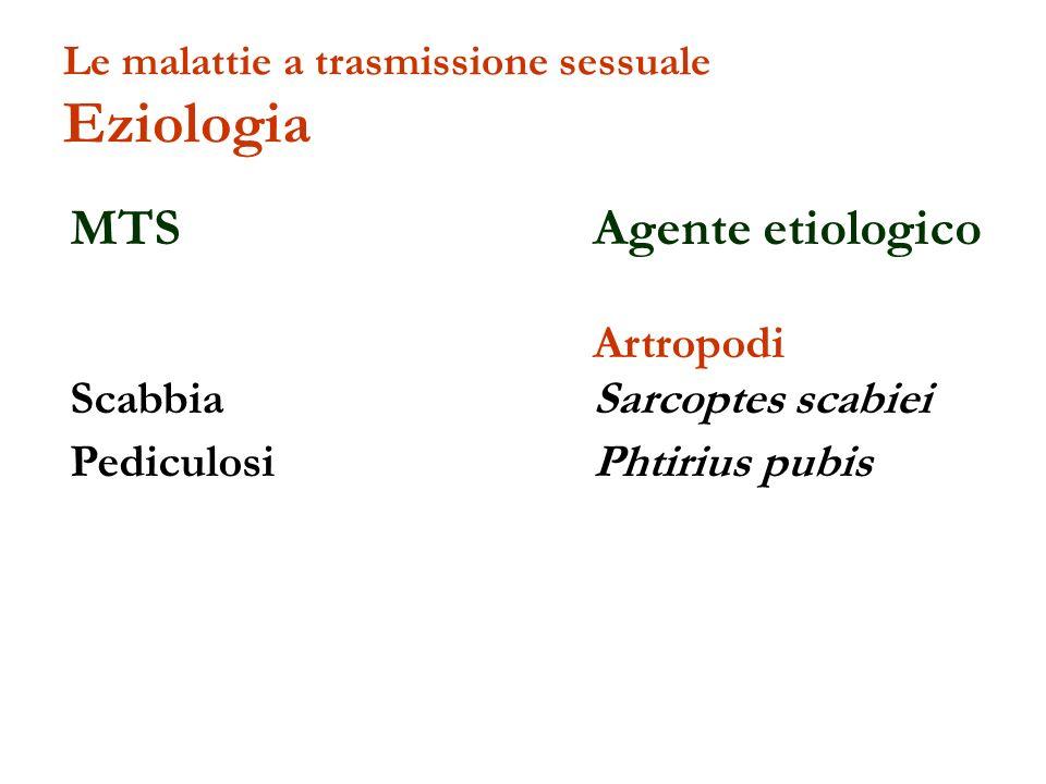 MTS Agente etiologico Artropodi Scabbia Sarcoptes scabiei Pediculosi Phtirius pubis Le malattie a trasmissione sessuale Eziologia