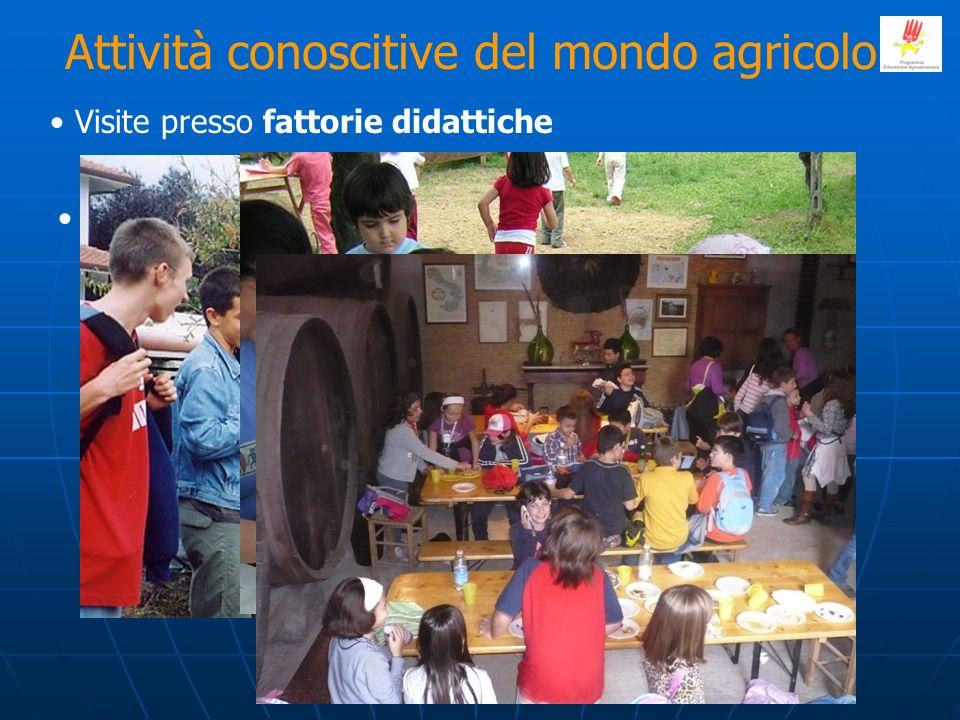 Attività conoscitive del mondo agricolo Percorsi territoriali dal campo alla tavola Visite presso fattorie didattiche