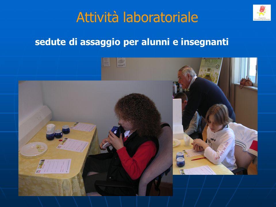 Attività laboratoriale sedute di assaggio per alunni e insegnanti