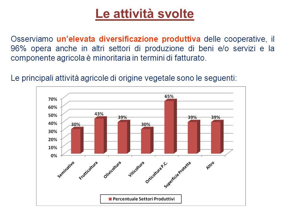 Le principali attività agricole di origine vegetale sono le seguenti: Le attività svolte Osserviamo unelevata diversificazione produttiva delle cooperative, il 96% opera anche in altri settori di produzione di beni e/o servizi e la componente agricola è minoritaria in termini di fatturato.