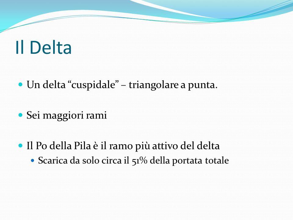 Il Delta Un delta cuspidale – triangolare a punta. Sei maggiori rami Il Po della Pila è il ramo più attivo del delta Scarica da solo circa il 51% dell