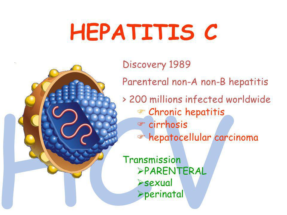 HCV HEPATITIS C Discovery 1989 Parenteral non-A non-B hepatitis > 200 millions infected worldwide Chronic hepatitis cirrhosis hepatocellular carcinoma