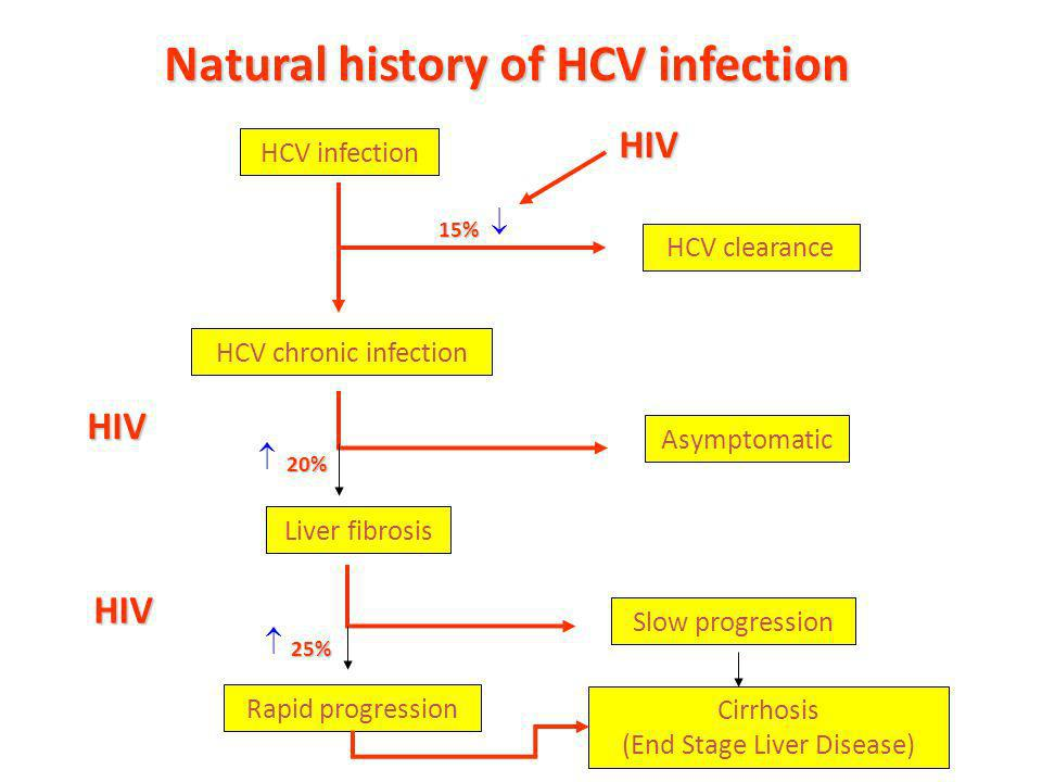 HCV infection HCV clearance HCV chronic infection 15% 85% Asymptomatic 80% Liver fibrosis 20% Slow progression Cirrhosis (End Stage Liver Disease) 25%