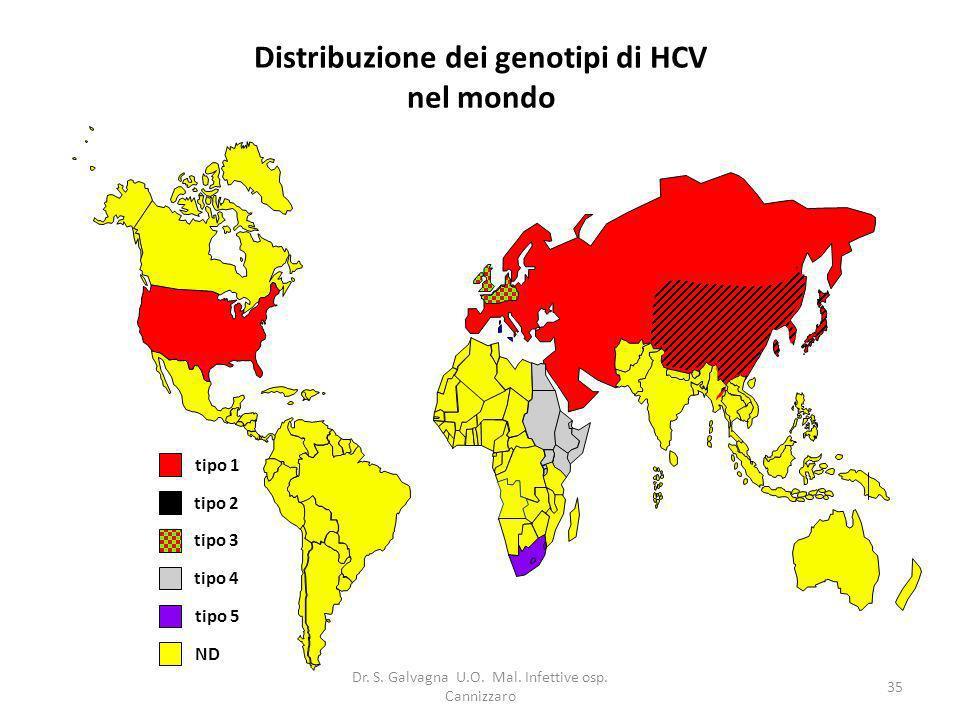 Dr. S. Galvagna U.O. Mal. Infettive osp. Cannizzaro 35 Distribuzione dei genotipi di HCV nel mondo tipo 2 tipo 3 tipo 4 tipo 1 tipo 5 ND