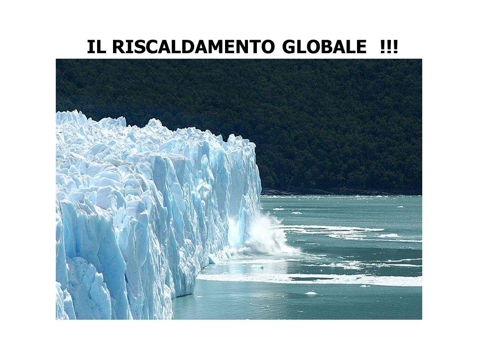 IL RISCALDAMENTO GLOBALE !!!