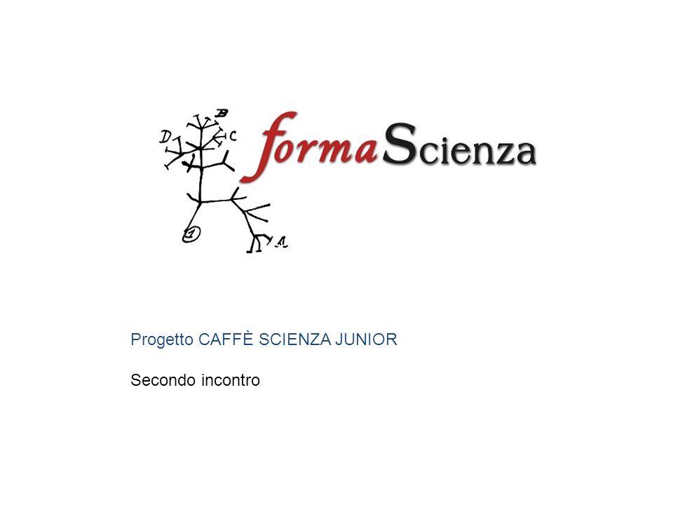 Progetto CAFFÈ SCIENZA JUNIOR Secondo incontro