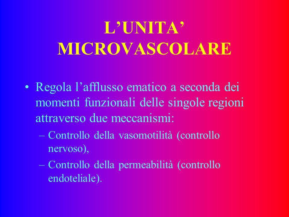 LUNITA MICROVASCOLARE Riceve informazioni e reagisce a stimoli locali È costituita da microvasi, il sangue che li pecorre dai tessuti metabolicamente