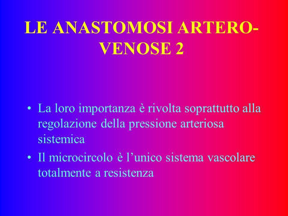 LE ANASTOMOSI ARTERO- VENOSE 1 Strutture deputate al collegamento della rete arteriosa con quella venosa shuntando quella capillare. Sono costituite d
