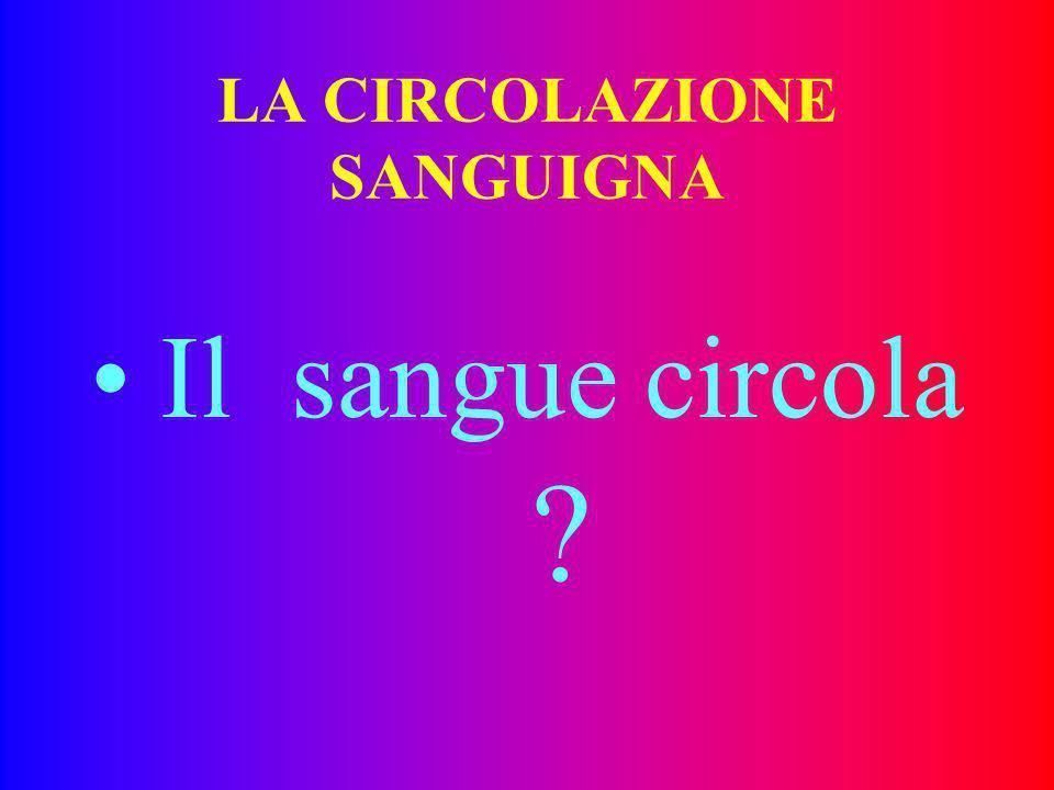 SEMEIOTICA STRUMENTALE DEL MICROCIRCOLO 14.