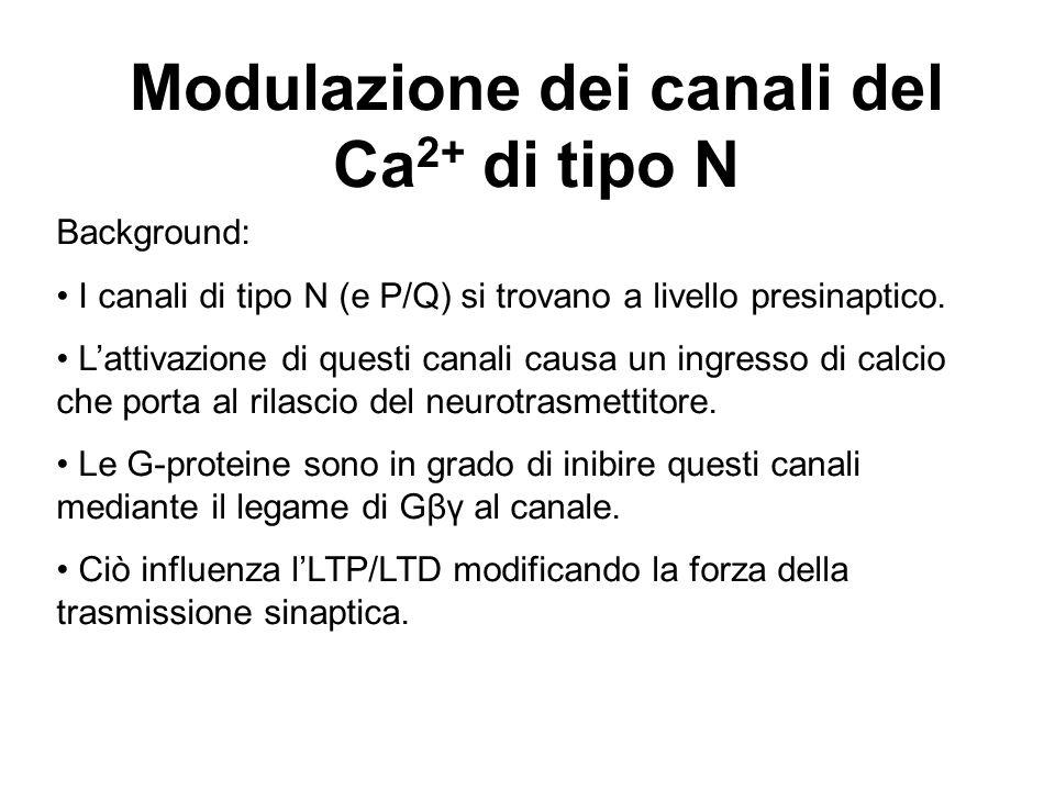 Modulazione dei canali del Ca 2+ di tipo N Background: I canali di tipo N (e P/Q) si trovano a livello presinaptico. Lattivazione di questi canali cau