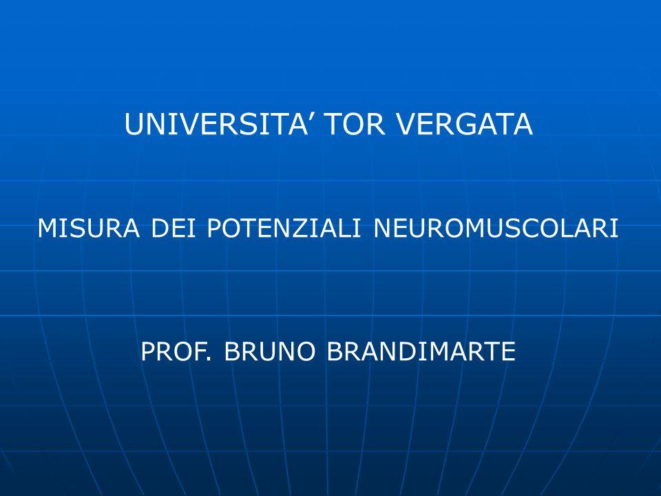 Misuratore Neuromuscolare NM4 Strumento per lacquisizione e lelaborazione del segnale elettromiografico di superficie