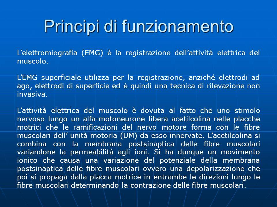 Principi di funzionamento Lampiezza del potenziale dazione di una singola fibra dipende dal diametro della fibra, dalla distanza tra fibra ed elettrodo (diminuisce allaumentare della distanza tra gli elettrodi di prelievo e la fibra),etc.