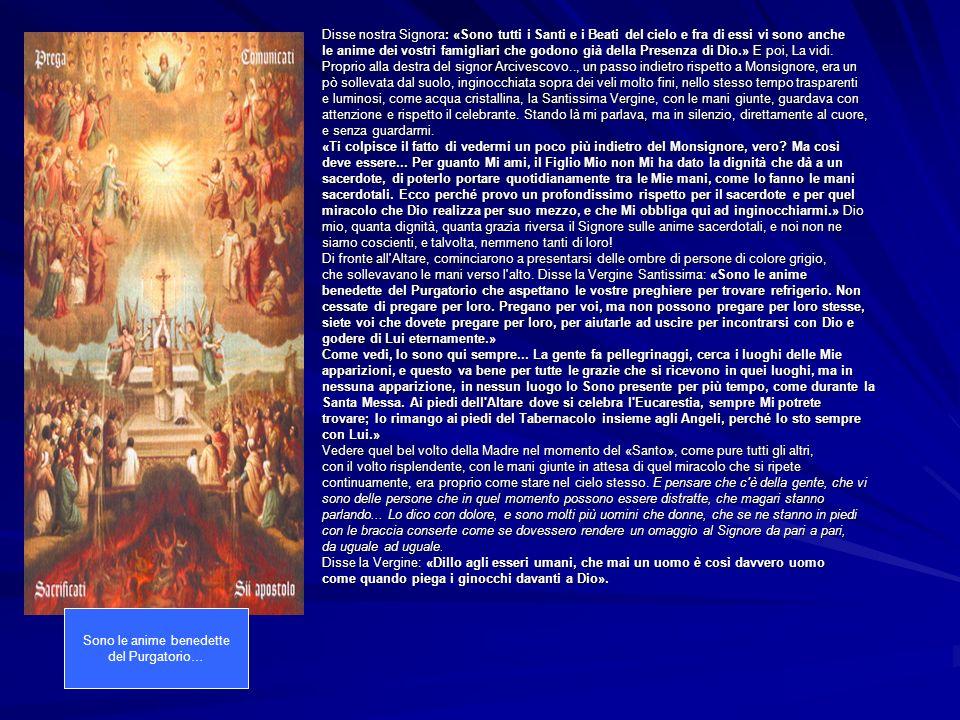 Disse nostra Signora: «Sono tutti i Santi e i Beati del cielo e fra di essi vi sono anche le anime dei vostri famigliari che godono già della Presenza di Dio.» E poi, La vidi.