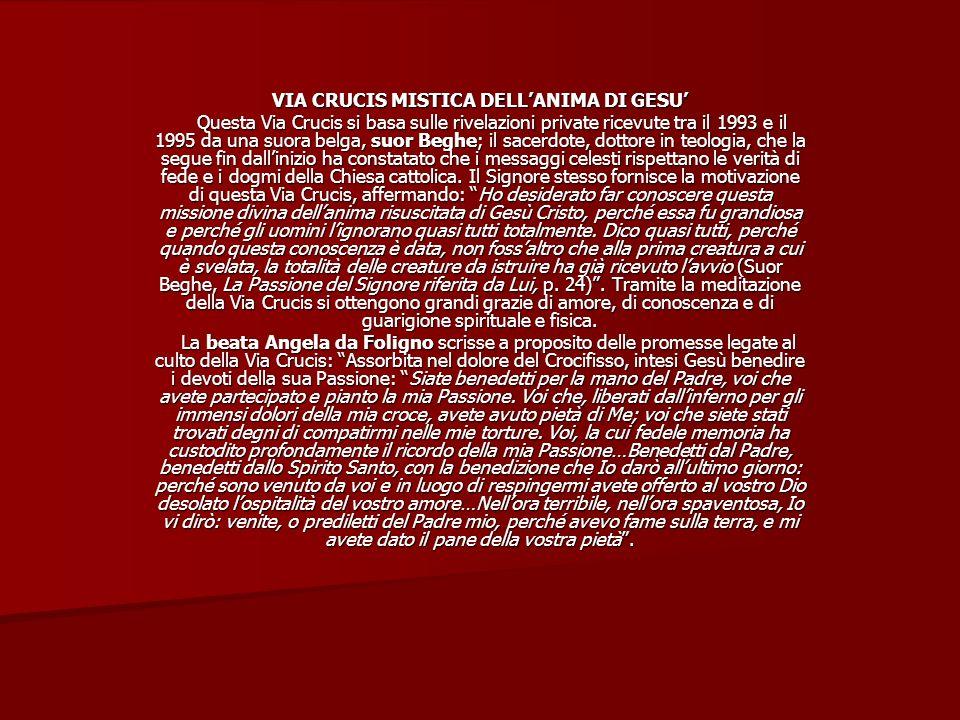 VIA CRUCIS MISTICA DELLANIMA DI GESU Questa Via Crucis si basa sulle rivelazioni private ricevute tra il 1993 e il 1995 da una suora belga, suor Beghe; il sacerdote, dottore in teologia, che la segue fin dallinizio ha constatato che i messaggi celesti rispettano le verità di fede e i dogmi della Chiesa cattolica.