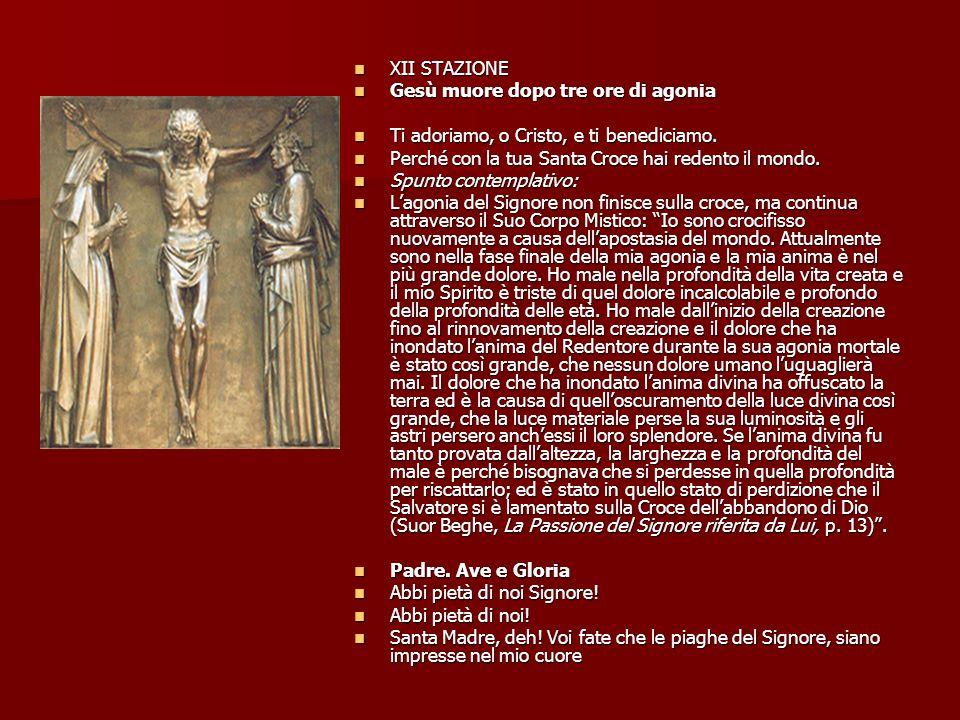 XII STAZIONE XII STAZIONE Gesù muore dopo tre ore di agonia Gesù muore dopo tre ore di agonia Ti adoriamo, o Cristo, e ti benediciamo.