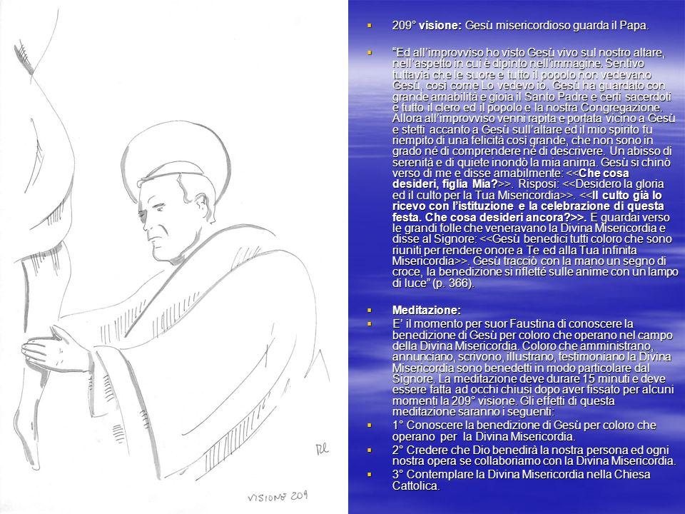 209° visione: Gesù misericordioso guarda il Papa.209° visione: Gesù misericordioso guarda il Papa.