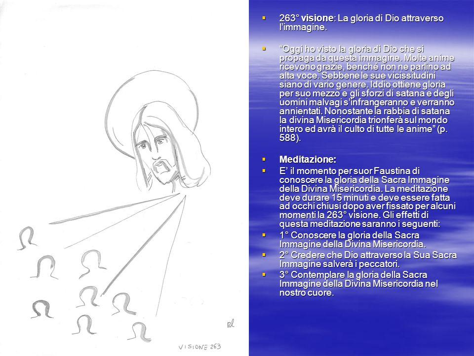 263° visione: La gloria di Dio attraverso limmagine.
