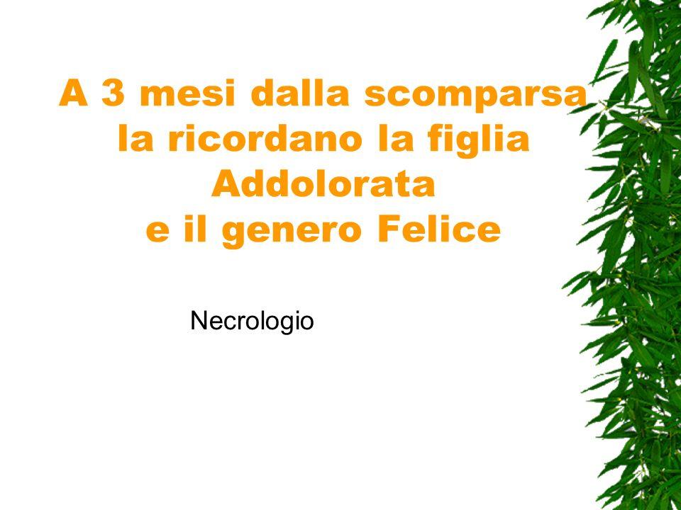 A 3 mesi dalla scomparsa la ricordano la figlia Addolorata e il genero Felice Necrologio